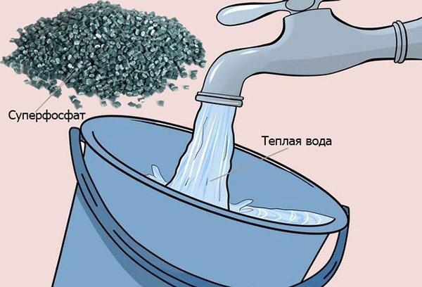 Приготовление раствора минерального удобрения
