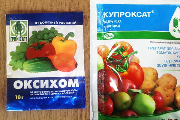 """Препараты """"Оксихом"""" и """"Купроксат"""" от антракноза малины"""