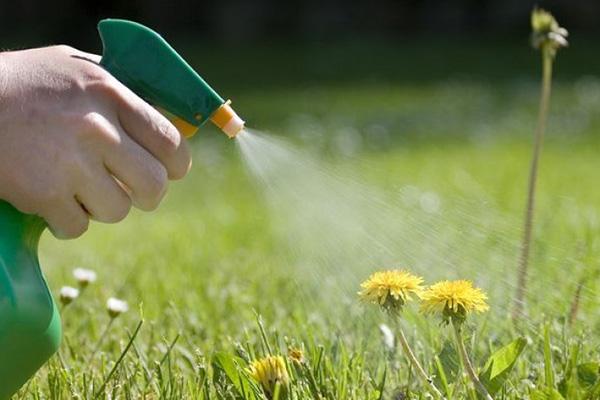 Применение гербицида