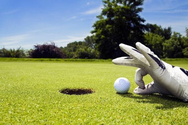 Спортивный газон на поле для гольфа