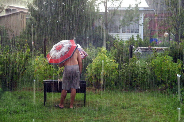 Дождь на даче