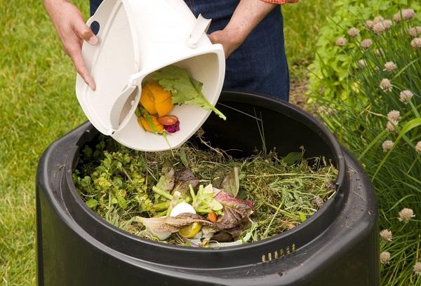 Богатый питательными веществами компост