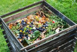 Ящик с компостом