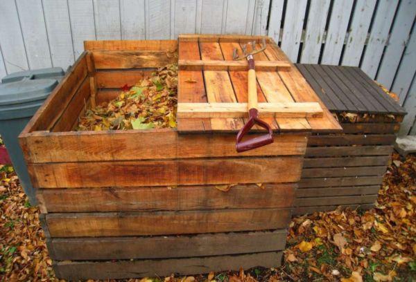 Ящик с листьями