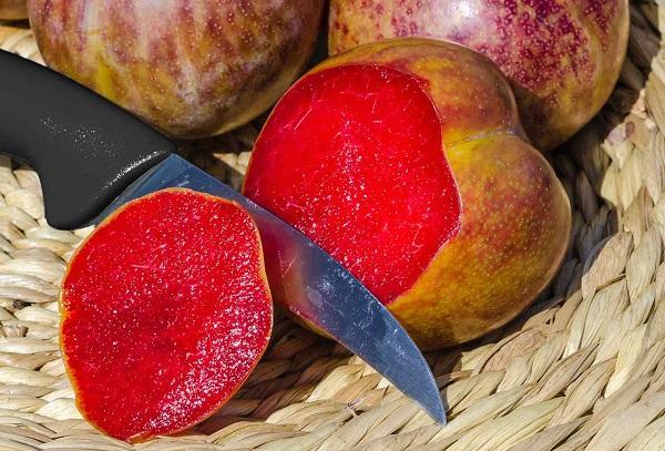 Плумкот гибрид сливы и абрикоса