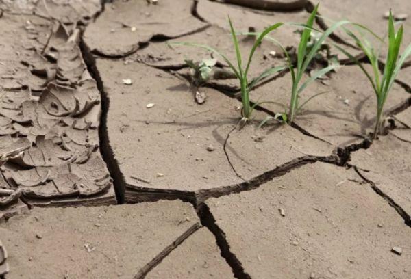 Деградация почвенного покрова