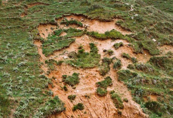 Деградация земли