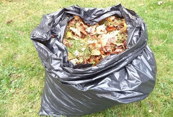 Мешок с желтыми листьями
