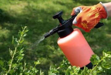 Механическая защита растений