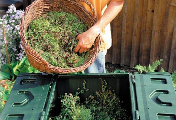 Заготовка компоста