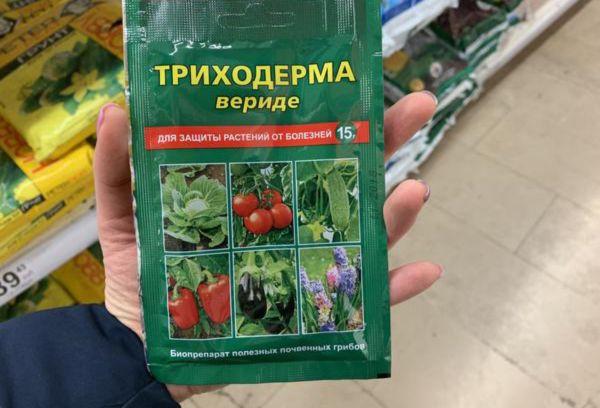 Триходерма для растений