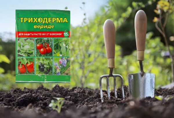 Триходерма препарат для растений