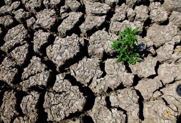Деградация почвы