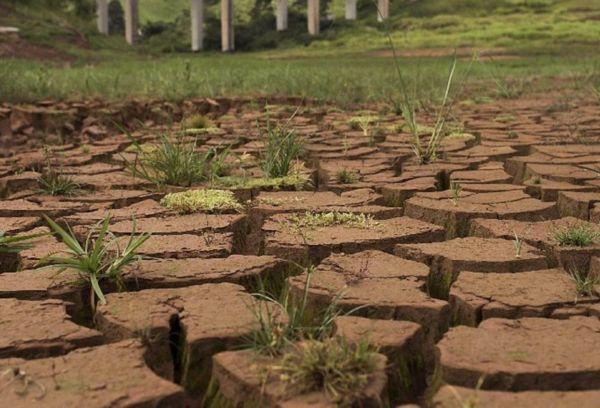 Поврежденная структура почвы