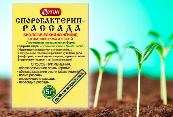 «Споробактерин» – применение для растений, инструкция