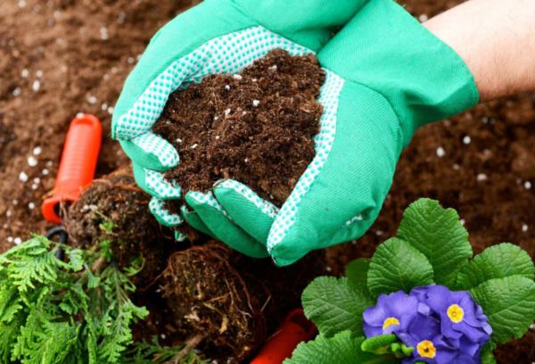 Удобренная почва