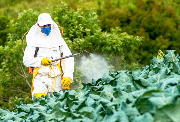 Опрыскивание пестицидами
